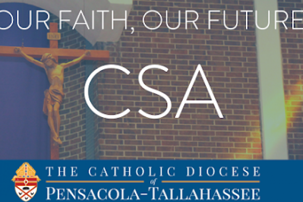 CSA Weekend February 2021: Bishop's Message