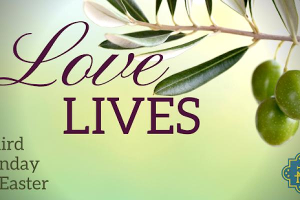 Love Lives: Week 3