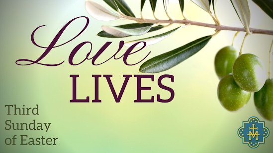 Love Lives: Week 3