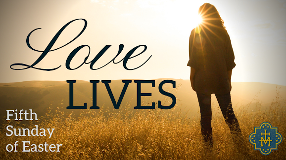 Love Lives, Week 5