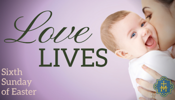 Loves Lives: Week 6